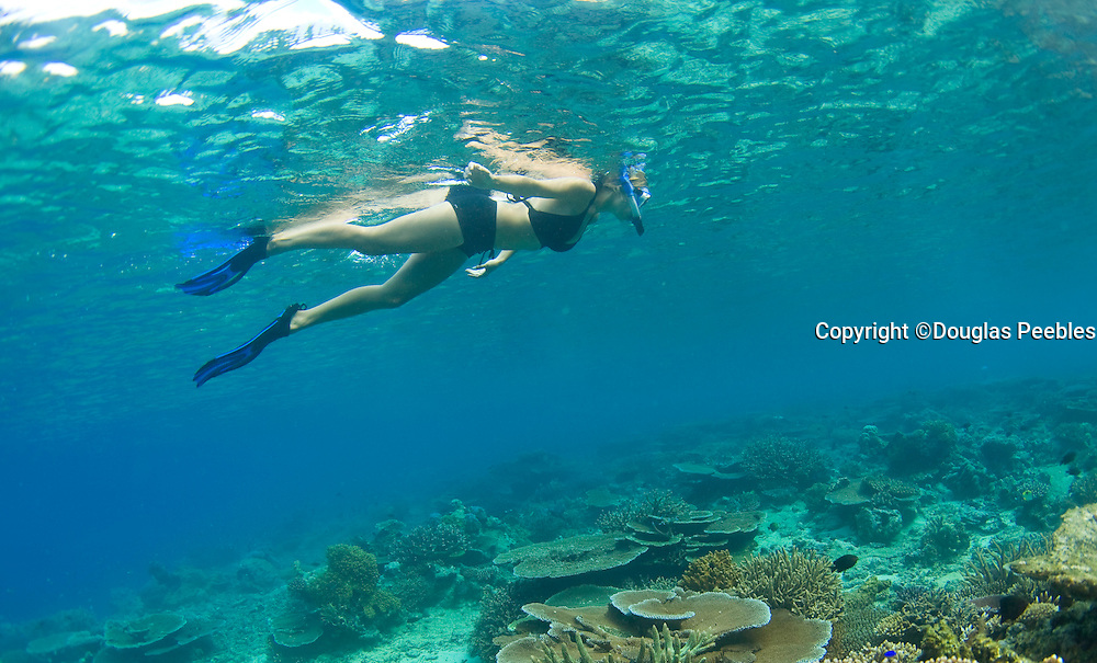 Woman snorkeling, Taveuni, Fiji