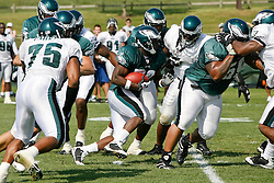 Philadelphia Eagles running back LeSean McCoy #29 runs the ball during the Philadelphia Eagles NFL training camp in Bethlehem, Pennsylvania at Lehigh University on Saturday August 8th 2009. (Photo by Brian Garfinkel)