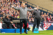 Interim Celtic Manager Neil Lennon during the William Hill Scottish Cup Final match between Heart of Midlothian and Celtic at Hampden Park, Glasgow, United Kingdom on 25 May 2019.