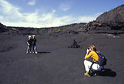 Kilauea Iki Crater, Hawaii Volcanoes national Park, Island of Hawaii<br />