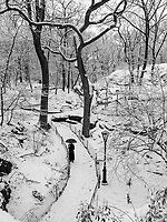 The Ramble in Central Park, New York City