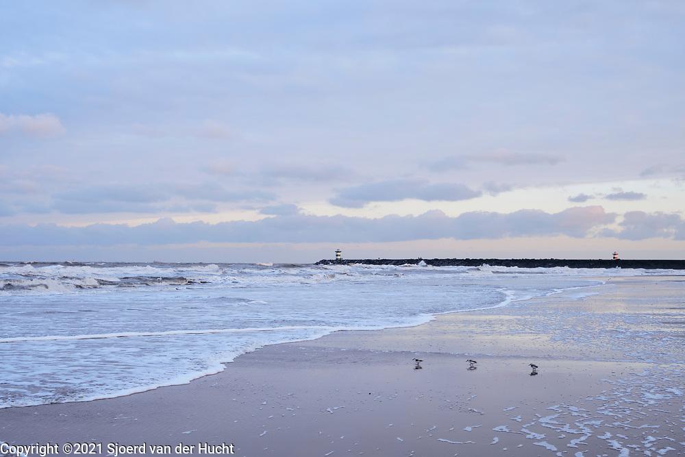Uitzicht op de havenhoofden van Scheveningen haven vanaf het Zuiderstrand, Den Haag | View at the jetties of Scheveningen harbor from the Zuiderstrand, The Hague