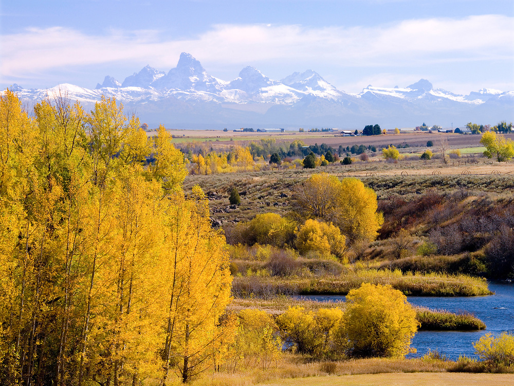 Teton Mountains view from near Ashton Idaho with the Henry's Fork of the Snake River in the foreground and trees and bushes in their fall colors. Licensing and Open Edition Prints