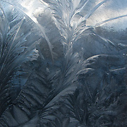 Frost patterns on the windows of the Snow Leopard Lodge. Village of Ulley, India