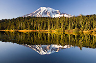 Mount Rainier is mirrored in Reflection Lakes in the evening light at Mount Rainier National Park.