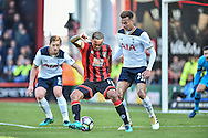 AFC Bournemouth Forward, Callum Wilson (13) holds off Tottenham Hotspur Midfielder, Dele Alli (20) and Tottenham Hotspur Defender, Jan Vertonghen (5) during the Premier League match between Bournemouth and Tottenham Hotspur at the Vitality Stadium, Bournemouth, England on 22 October 2016. Photo by Adam Rivers.