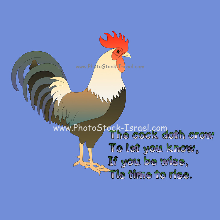 Nursery rhymes and childhood images series: The cock doth crow, To let you know, That If you be wise, It is time to rise. <br /> For Early to bed And early to rise. Is the way to be healthy, And wealthy and wise.