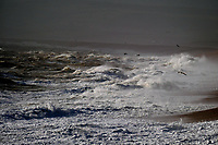Storm Francis hits chesil beach Dorset,  with gusts reaching almost 80mph photo by Michael Palmer