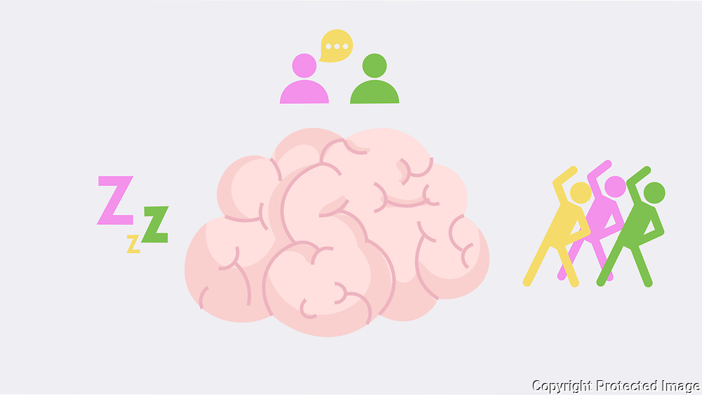 Healthy Brain Needs Sleep, Excercise, and Socializing