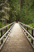 Bridge over Thunder Creek, Ross Lake National Recreation Area, North Cascades Washington