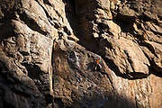 A young man rock climbs in Clear Creek Canyon, Colorado.