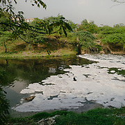 The Shahadra drain - Industrial waste with all toxic chemicals has caused formation of foam over Yamuna that completely covers it.