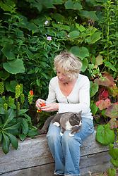 Carol Klein collecting seeds from Arum italicum 'Pictum' syn  A. italicum subsp. italicum 'Marmoratum' - Lords and ladies. Sylvia the cat