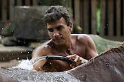 Robéiro washes his horse in Rio Moji, Cubatão