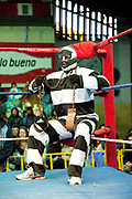Male wrestler dressed as convict in ring. Lucha Libre wrestling origniated in Mexico, but is popular in other latin Amercian countries, including in La Paz / El Alto, Bolivia. Male and female fighters participate in the theatrical staged fights to an adoring crowd of locals and foreigners alike.