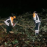 Opruimen omgevallen boom nav storm Museumlaan Huizen