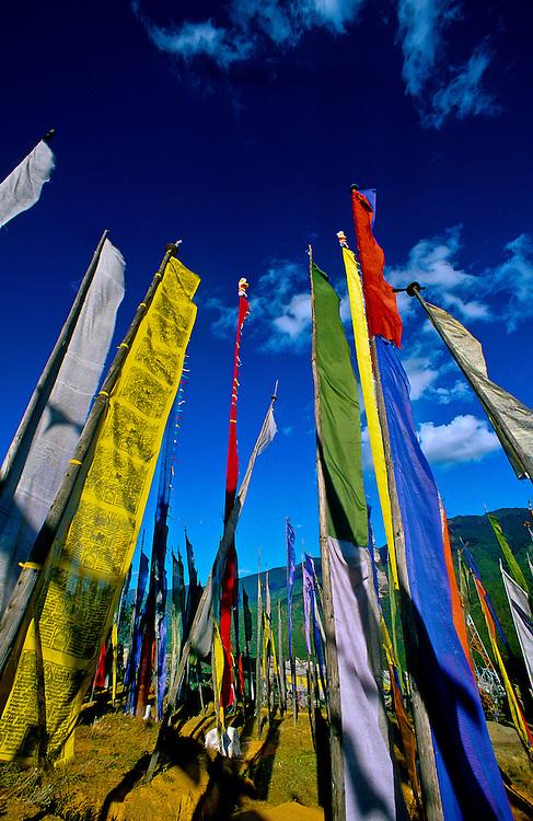 Prayer flags in hills above Thimpu, Bhutan