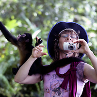 Central America, Latin America, Costa Rica, Golfo Dulce, Cana Blanca Wildlife Sanctuary. Primate encounters - Spider Monkey and woman engaged but oblivious to the other's actions.
