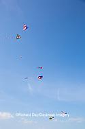 63495-02712 Kites flying at Flagler Beach Flagler Beach, FL