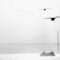 Lisbon, Portugal 24 October 2012<br /> 25 de Abril bridge.<br /> Photo: Ezequiel Scagnetti <br /> Copyright: European Union