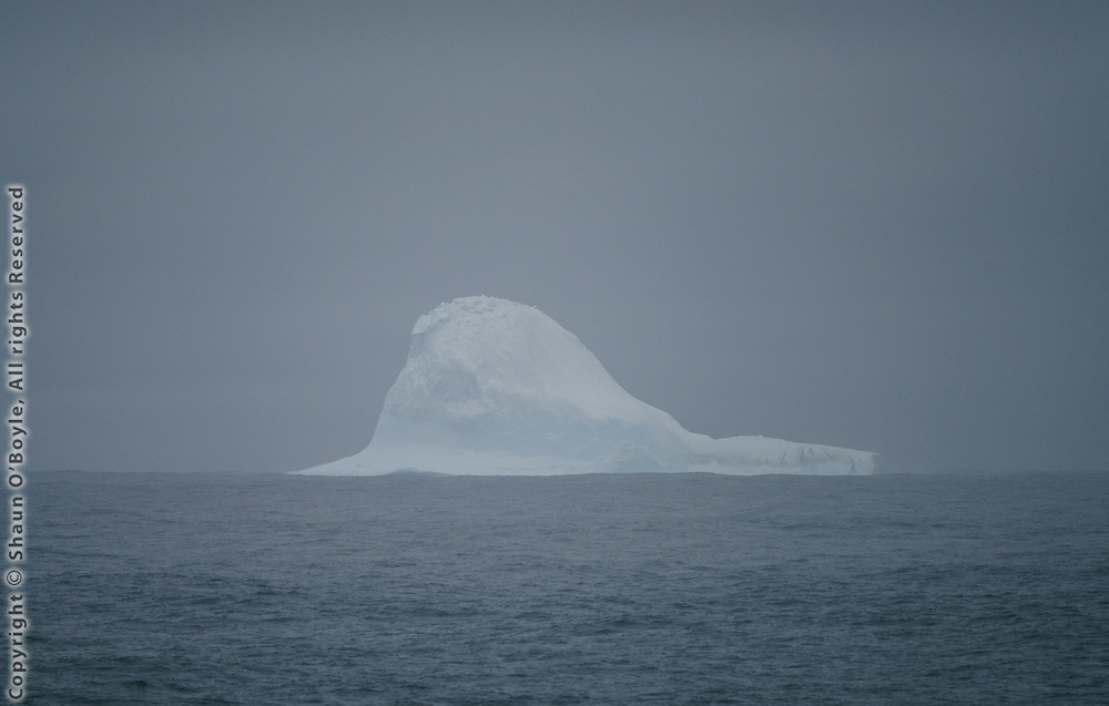 First Iceberg, near Cape Shirreff, South Shetland Islands