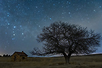 In January I went out to capture one of my favorite photogenic trees late at night. It sits by itself in a field near a small abandoned house. Cassiopeia, one of the most recognizable constellations, is like a celestial clock. In 23 hours and 56 minutes it will make one rotation around the North Star. But unlike a clock, it spins counterclockwise. When closest to the horizon the 5 brightest stars make the shape of a W, but when it's highest overhead it looks like an M. From anywhere above 35°N, Cassiopeia is circumpolar. That means the constellation neither rises nor sets, always staying above the horizon. In order to get a sharper picture I shot a 12-minute exposure of the foreground, and the tree branches didn't even move an inch. Windless nights are quite rare during winter in Wyoming.