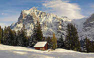 Alpine slopes with snow and Swiss Chalet  looking towards the Wetterhorn Mountain .<br /> <br /> Visit our SWITZERLAND  & ALPS PHOTO COLLECTIONS for more  photos  to browse of  download or buy as prints https://funkystock.photoshelter.com/gallery-collection/Pictures-Images-of-Switzerland-Photos-of-Swiss-Alps-Landmark-Sites/C0000DPgRJMSrQ3U