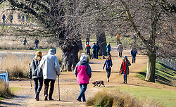 © Licensed to London News Pictures. 17/03/2021. London, UK. Members of the public enjoy a sunny spring day in Richmond Park, South West London this afternoon as weather forecasters predict a mild week ahead with temperatures reaching 14c in London and South East. Photo credit: Alex Lentati/LNP