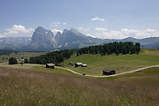 Horse and cart with alpine panorama of farming huts on the Siusi plateau, above the South Tyrolean town of Ortisei-Sankt Ulrich in the Dolomites, Italy.