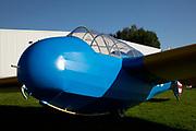 Schweizer TG-3 Training Glider
