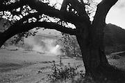Countryside View, Molln, Austria, 1935
