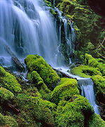 Proxy Falls, Three Sisters Wilderness, Willamette National Forest, Oregon