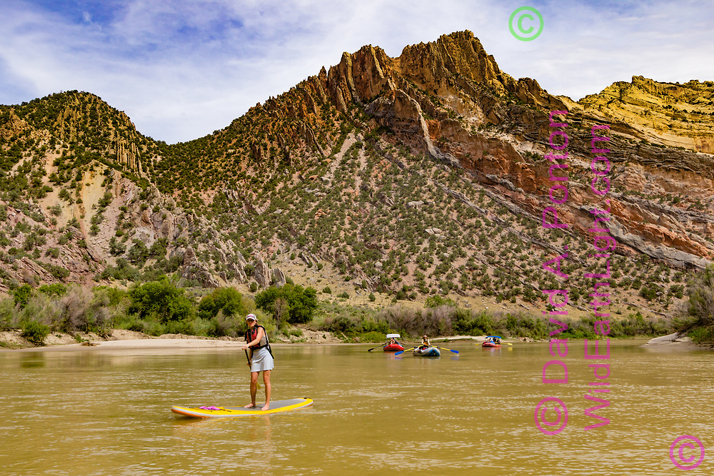Woman on paddle board with river rafts on the Green River below the dramatically deformed strata of the Mitten Park Fault in Lodore Canyon, © David A. Ponton