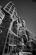 UTS Business School, designed by architect  Frank Gehry.