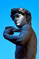 Italie, Toscane, Florence, Piazza della Signoria, copie du David de Michel-Ange //  Copy of David from Michelangelo, Piazza della Signoria, Florence, Tuscany, Italy