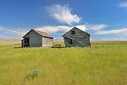 Old graneries on abandonned farm , Near Monchy, Saskatchewan, Canada