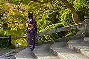 Japanese woman dressed in Traditional Kimonos at the Kiyomizu-dera Temple, Kyoto, Japan