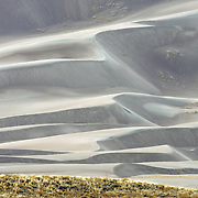 Soft diffused cloudy light makes the dunes of Great Sand Dunes National Park glow in silver.