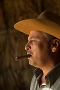 Portrait of man smoking cigar and looking away, Vinales, Cuba