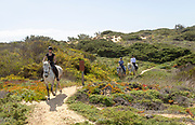 Three people pony trekking on coastal path, the Fisherman's Trail of Ruta Vicentina, Odeceixe, Algarve, Portugal, Southern Europe