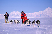 Dogmushing in Talkeetna Alaska