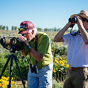 Sean Baker and Greg Peck look for wildlife in the Antelope Flats area of Grand Teton National Park, Wtoming.
