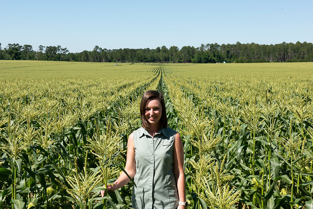 Casey Cox stands in a field of sweet corn, a valuable crop for Southwest Georgia. At age 30, she is  transitioning to the role of taking over the farming operations from her father, Glenn.