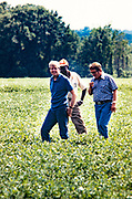 President Jimmy Carter and his brother Billy Carter are joined by a tenant farmer as they assess their summer peanut crop. The Carters own tracts of farmland around Plains, Georgia along with a peanut warehouse in that city, although the President's holdings are held in a blind trust during his presidency.