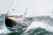 sailing in the Opera House Cup regatta.
