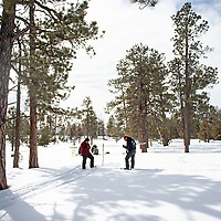 Wilson Wauneka, left, an engineering technician and Ralphus Begay, right, a hydrologic technician with the Navajo Nation Department of Water measure the snowpack at several sample points at the Whiskey Creek SNOTEL site in the Chuska mountains, Tuesday, Jan. 29.