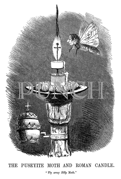 """The Puseyite Moth and Roman Candle. """"Fly away silly moth."""""""