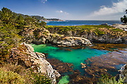 Point Lobos State Reserve looking toward China Cove, near Carmel, California, Highway 1,