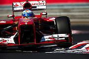 Hungarian Grand Prix 2013<br /> our best selection from Award winning Photographer Darren Heath.<br /> Alonso during the race<br /> ©Darren Heath/Exclusivepix