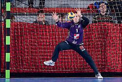 Goalkeeper of Krim Jelena Grubisic  at handball match of Round 5 of Champions League between RK Krim Mercator and Metz Handball, France, on January 9, 2010 in Kodeljevo, Ljubljana, Slovenia. (Photo by Vid Ponikvar / Sportida)